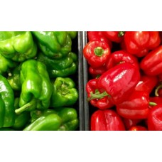 PEPPER GREEN, RED – PIMIENTO VERDE, ROJO 1 kg