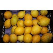 LEMONS -  LIMONES  1 kg